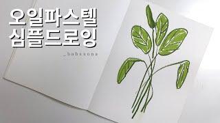 오일파스텔 드로잉 연습 / 오일파스텔 식물그림/ 오일파…