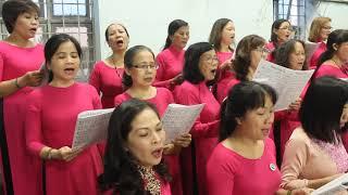 Hiệp Lễ: TRÊN CÂY THẬP GIÁ – Sáng tác: Lm. Thái Nguyên