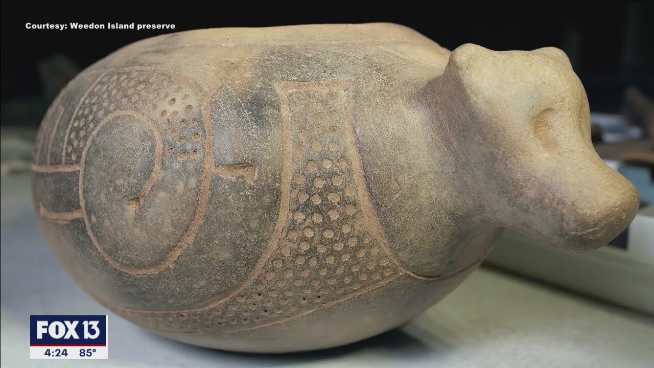 Download Archaeological finds at Weedon Island Preserve