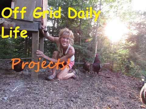 Modern  Off Grid Homesteading~ A Day In The Life
