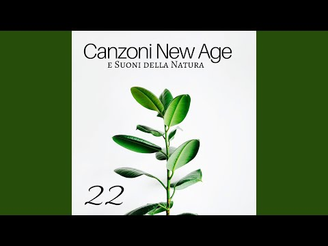 Canzone New Age