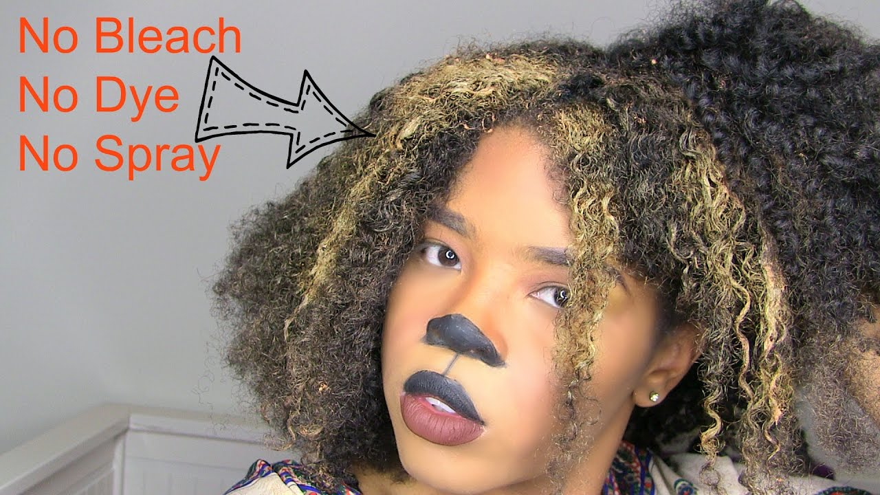 Natural Hair Halloween Lion Costume  sc 1 st  YouTube & Natural Hair Halloween Lion Costume - YouTube