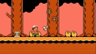 NES Longplay #45: Adventure Island II