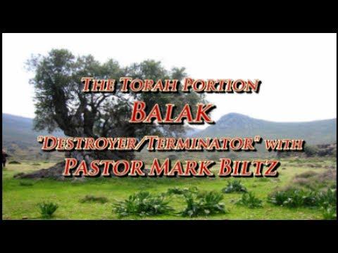 Saturday, July 8, 2017: Balak (Balak)