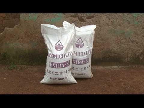 Maize Fertilizer Application