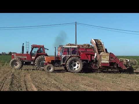 Landb. Lambert - Rèves - Ford 7810 - Fiat 1000 - Fiat 1000 Super - Deutz 7206 - Fiat 1580 DT