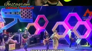 Download lagu Heppy asmara dangdut koplo terbaru..dalan liyane ..