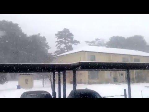 Snow Day In Misawa, Japan