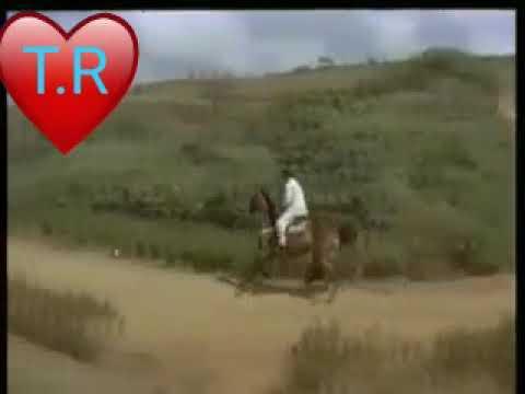 Krishna Whatsapp Status Telugu