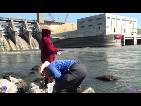 XLL-Red Rock Dam Iowa Fishing July,  2020