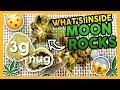 What's Inside MOON ROCKS?