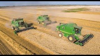 BIG Wheat Harvest - John Deere 9680 WTS + W660 + W650   Żniwa 2018