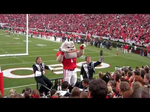 Redcoats & Hairy Dawg performing
