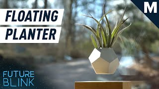 This Levitating Planter Can Help You Zen Out | Future Blink