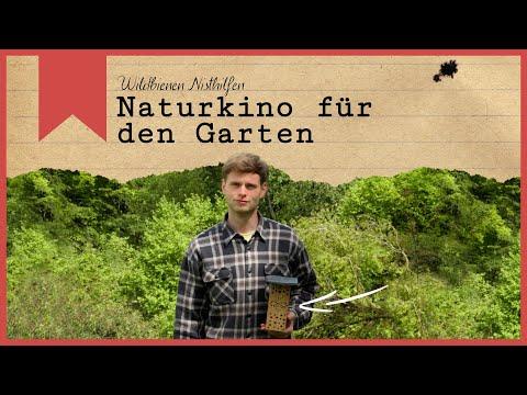Naturkino für den Garten - Wildbienen Nisthilfen - Insecticon und flowbee
