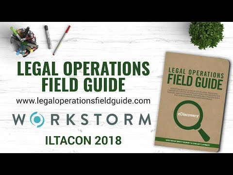Workstorm Interview at ILTACON2018 - Michele Lange