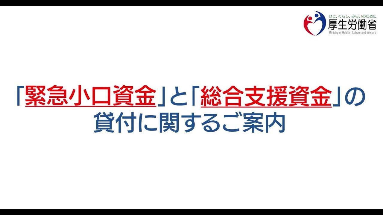 資金 沖縄 支援 総合