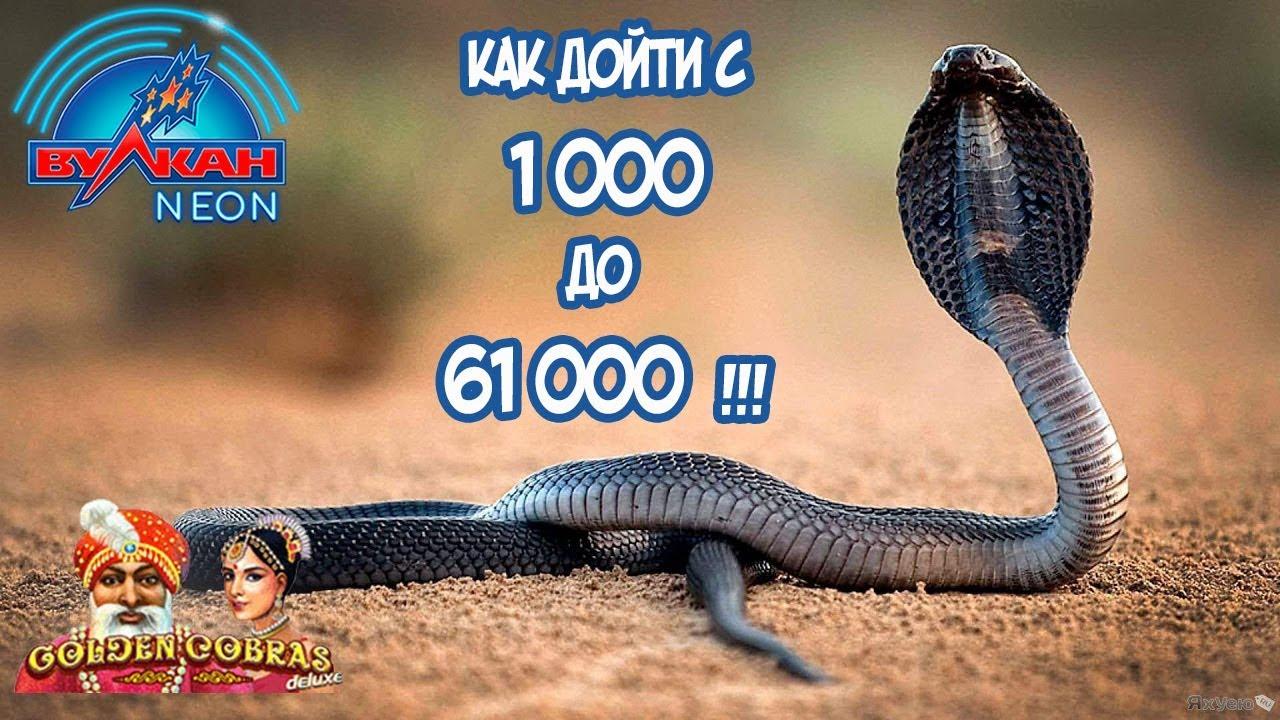 Казино Вулкан Победа слот Lucky Ladys Charm ставка 90 рублей и выигрыш 88000 тысяч рублей на бонусе