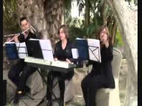 Grupo trio o cuarteto para Ceremonias en Guadalupe, Murcia