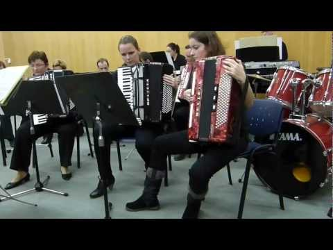 Pirates of the Caribbean  the Universe Accordion Orchestra