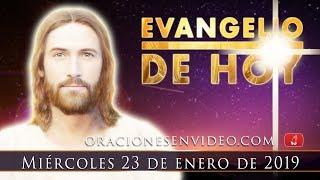 Evangelio De Hoy Miércoles 23 Enero 2019. ¿Salvarle la vid...