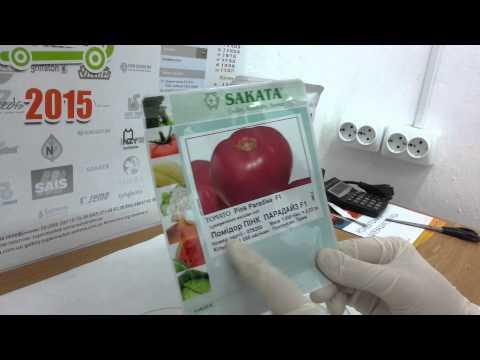 Антифейк. Часть 27. Семена розовоплодного томата Пинк Парадайз F1, селекция Sakata, Япония