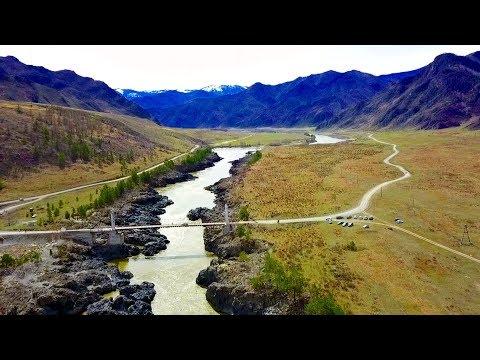 Горный Алтай. Ороктойский мост. Река Катунь. Цветение маральника - 2018.