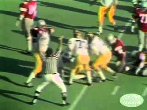1976 Ohio State Michigan Rob Lytle Touchdown