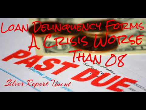 Loan Delinquencies Forming An Economic Crisis Worse Than The 2008 Financial Crisis!