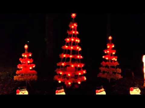 Christmas musical tree light show