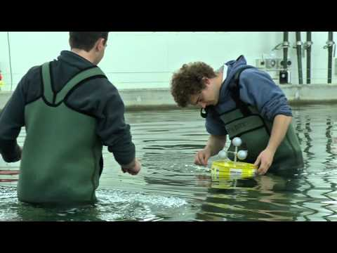 Final year research project testing: Bachelor of Naval Architecture, AMC
