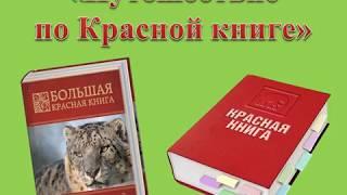 """""""Путешествие  по Красной книге"""""""