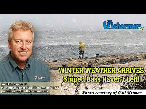 December 5, 2019 New Jersey/Delaware Bay Fishing Report With Jim Hutchinson, Jr.