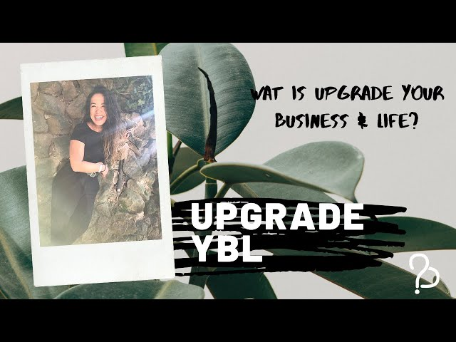 Wat is upgrade your business & life?