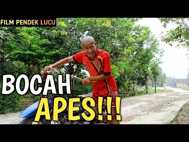 BOCAH APES - FILM PENDEK LUCU BAHASA JAWA