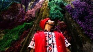Ninja Neeks - Forest Of My Mind [10K+] {OFFICIAL VIDEO} (Prod. By Ninja Neeks)