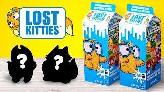 Finde eine Katze in einem Milchkarton: LOST KITTIES Boxen auspacken