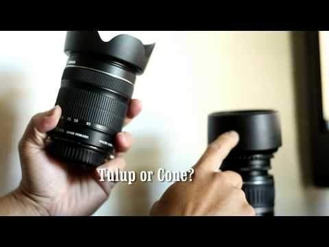 Lens Hood: Tulip or Cone shape? Brand name or off Brand?