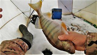 Не каждый раз нарвешься на раздачу такой рыбы Рыбалка в суровых условиях