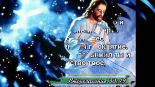 Мир Библии - 8 серия (Судьба)
