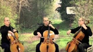 The Rains of Castamere trio cello (Game of Thrones)