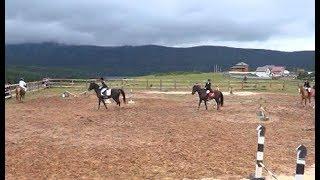 Конный спорт у подножия Таганая