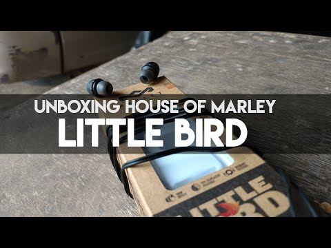 HOUSE OF MARLEY Little BIRDS earphones  UNBOXING AND FIRST REVIEW IN ( HINDI )