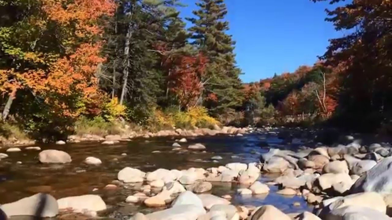 New Hampshire Fall Foliage Wallpaper New England Fall Foliage 2015 Youtube