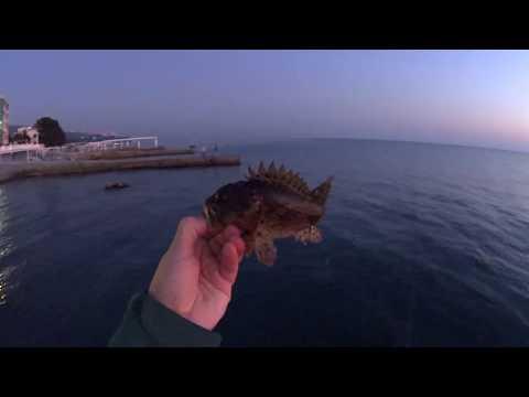 Rockfish 2019 Сочи осень 22 октября ерши горбыльки Игорь Зинковский
