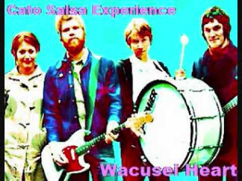 Cato Salsa Experience/Wacusei Heart(originally by Guitar Wolf)