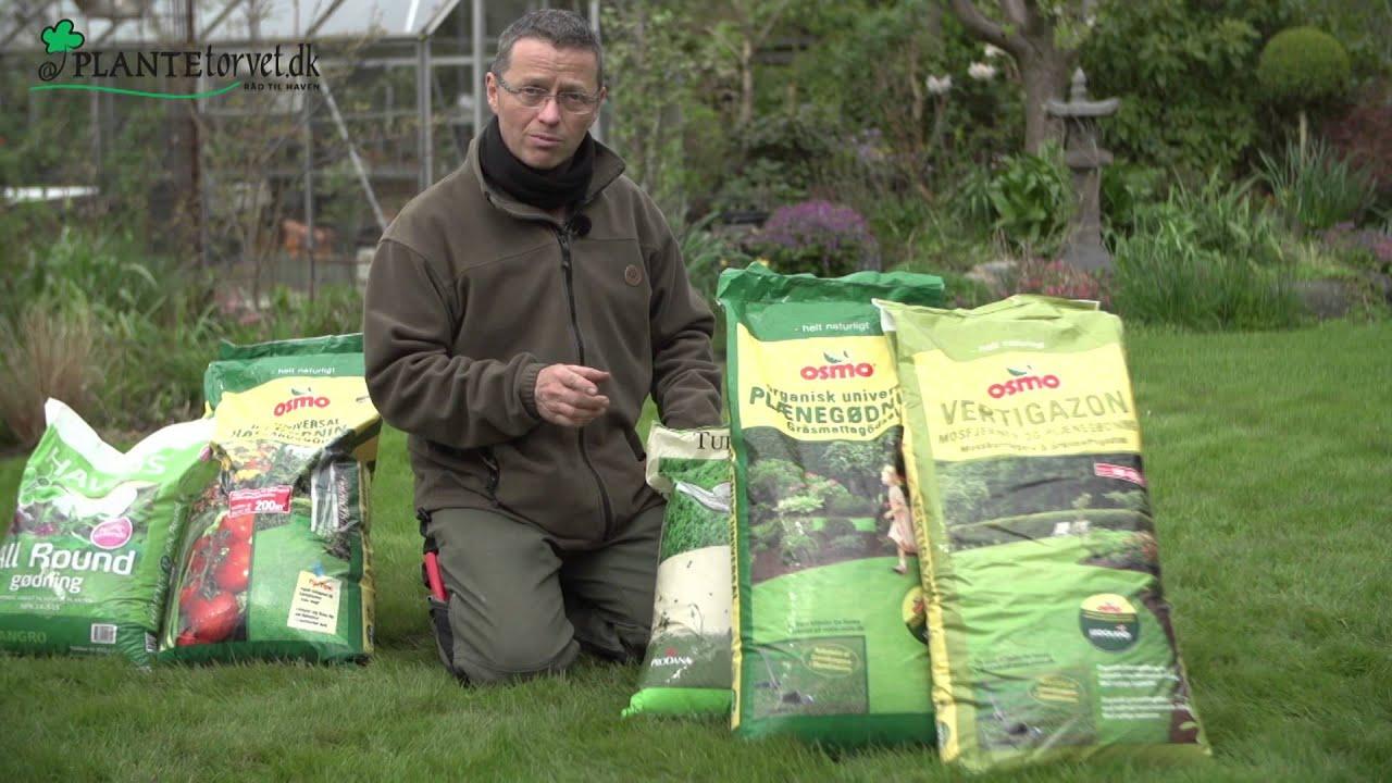kunstgødning til græsplæne