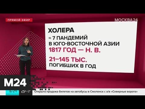 В ВОЗ не исключили заражение коронавирусом двух третей населения Земли - Москва 24