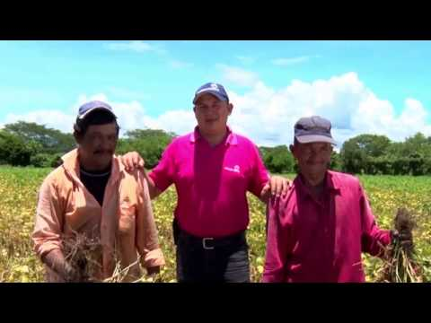 Improving Farmer Livelihoods in Honduras