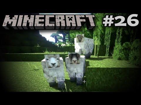 Schafe Sache: Dschungelschafe! - Minecraft #26 [DEUTSCH|HD]